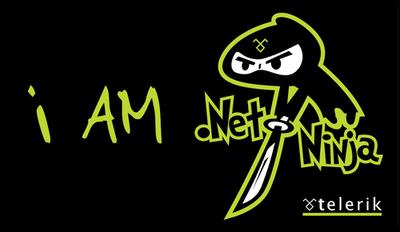 I'm .NET Ninja